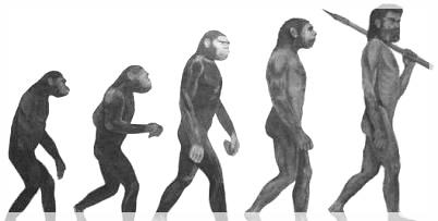 ダーウィン 進化論